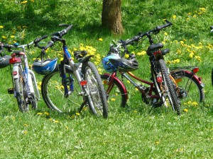 bicycles-6895_1280